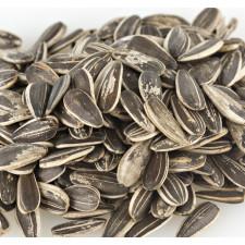 SweetGourmet Sunflower Seeds, In-Shell, Roasted No Salt
