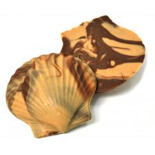 SweetGourmet Asher's Milk Chocolate Coated Large Molded Seashells
