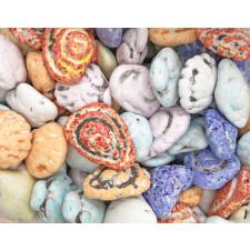 SweetGourmet Candy Coated Milk Chocolate Beach Seashells